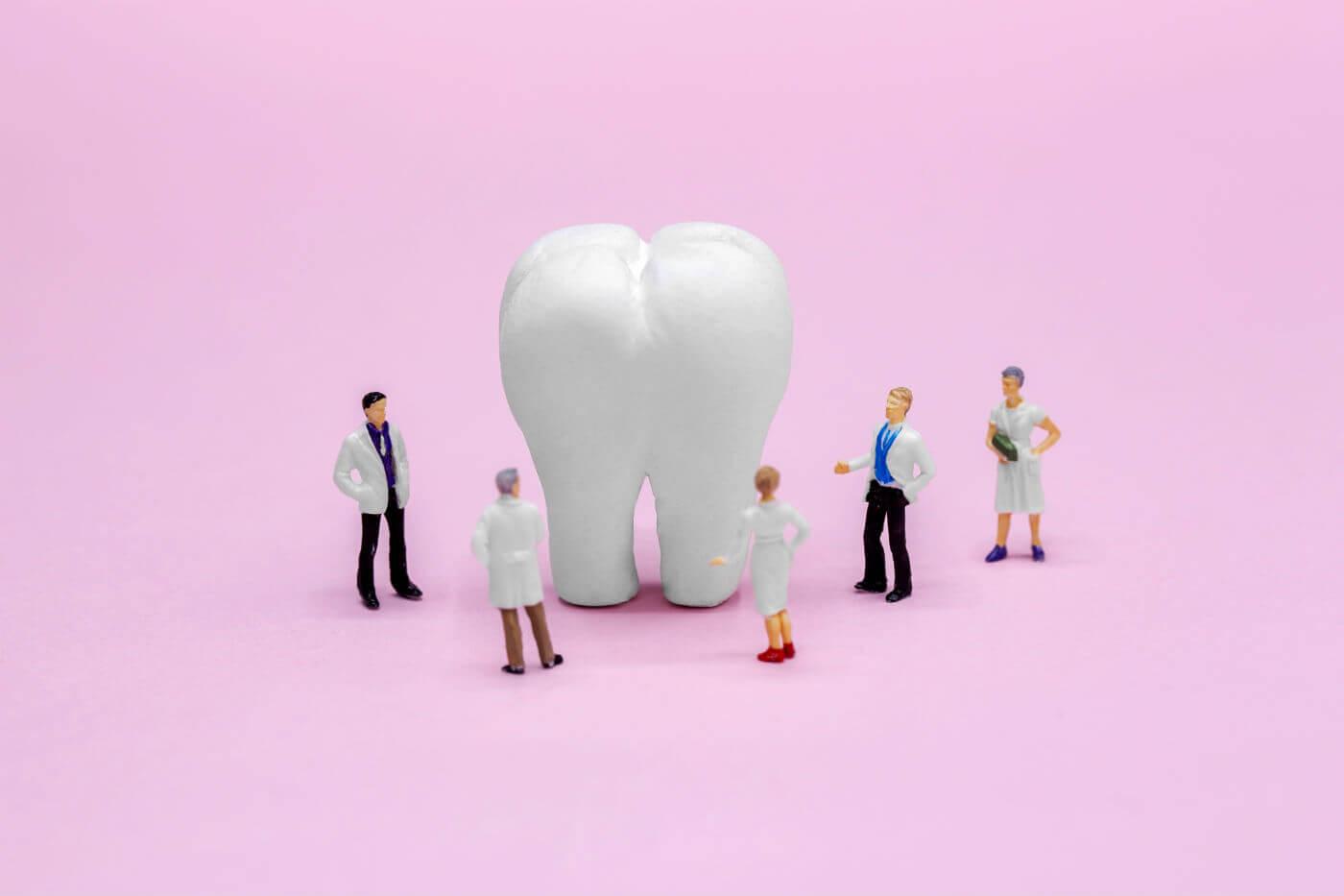 Diente miniaturizado tooth on a cheap